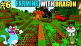 #6 | Farming With Dragons | With Oggy And Jack | Minecraft | In Hindi | Rock Indian Gamer |