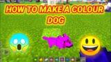 HOW TO MAKE A RAINBOW DOG IN MINECRAFT #short #shorts #youtubeshort