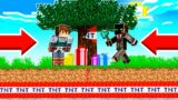I TROLLED my FRIENDS with a TNT TREE in Camp Minecraft!