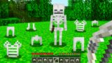 Minecraft BUT Skeletons Now Drop Their Armor…
