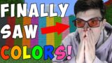 Minecraft, But I'm Not Colorblind Anymore…