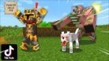 Minecraft TIKTOK VIRAL LIFE HACKS WITH BRAND NEW TIKTOKS ! DONT TEST OUT THESE HACK Minecraft