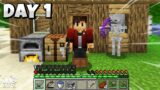 Minecraft UHC but it's an SMP…