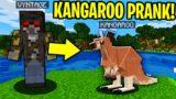 TROLLING AS A KANGAROO IN MINECRAFT!