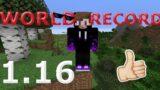 Minecraft Speedrun World Record 1.16