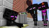 Monster  School : Poor Enderman Life Story – minecraft animation