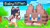 My BABY Kitten's SECRET Minecraft House!
