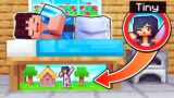 My Secret TINY Home Under My BED In Minecraft!
