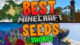 Best Minecraft Seeds #shorts