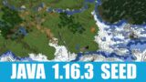 Minecraft Java 1.16.3 Seed: Village with an exposed mineshaft at spawn + igloo with basement