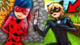 CAT NOIR and LADYBUG In Minecraft LADYBUG CRAFT NOOB vs PRO vs HACKER vs GOD ANIMATION CRAFTING