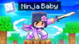 Sneaking Around as a BABY NINJA In Minecraft!