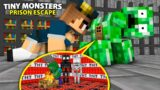 Monster School : TINY MONSTERS PRISON ESCAPE – Minecraft Animation