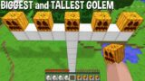 WHAT if SPAWN BIGGEST and TALLEST GOLEM in Minecraft ? MULTI GOLEM !
