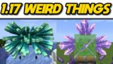 Weird things in Minecraft 1.17 #Shorts