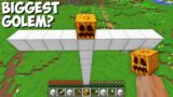 What HAPPENS if you SPAWN the BIGGEST GOLEM in Minecraft ? TITAN GOLEM !