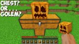 Why do NEED A CHEST GOLEM in Minecraft ? SECRET GOLEM !