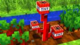 Minecraft But You Can Grow TNT