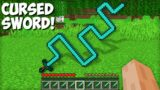 Why is this CURSED DIAMOND SWORD NEEDED in Minecraft ? STRANGEST SWORD !