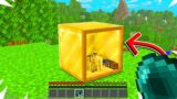 Minecraft But You Can Go Inside Any Block