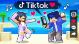 Using The TIKTOK MOD In Minecraft!