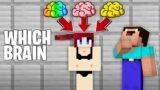 WHICH BRAIN to PUT in GIRL in Minecraft ?!