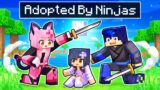 Adopted By NINJAS In Minecraft!
