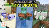 Everything Changed in the Minecraft 1.17.1 Update!