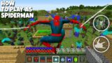 HOW THE SPIDERMAN SAVED THIS VILLAGE IN MINECRAFT! Inventory Noob vs Pro