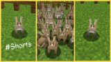 How to Breed Rabbits in Minecraft #Shorts