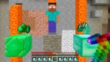 WHO to Save HEROBRINE or DIAMONDS  or EMERALDS in Minecraft ??? #Shorts