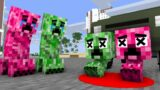Monster School : Creeper Babis Life – minecraft animation
