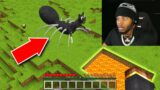we trapped cartoon cat spider in minecraft… *SCARY*